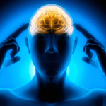 The Brain On Trauma